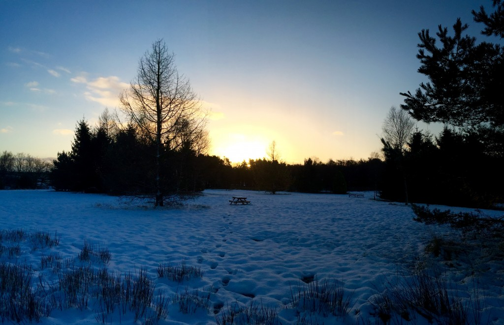 sunrise at darwin forest country park in the snow