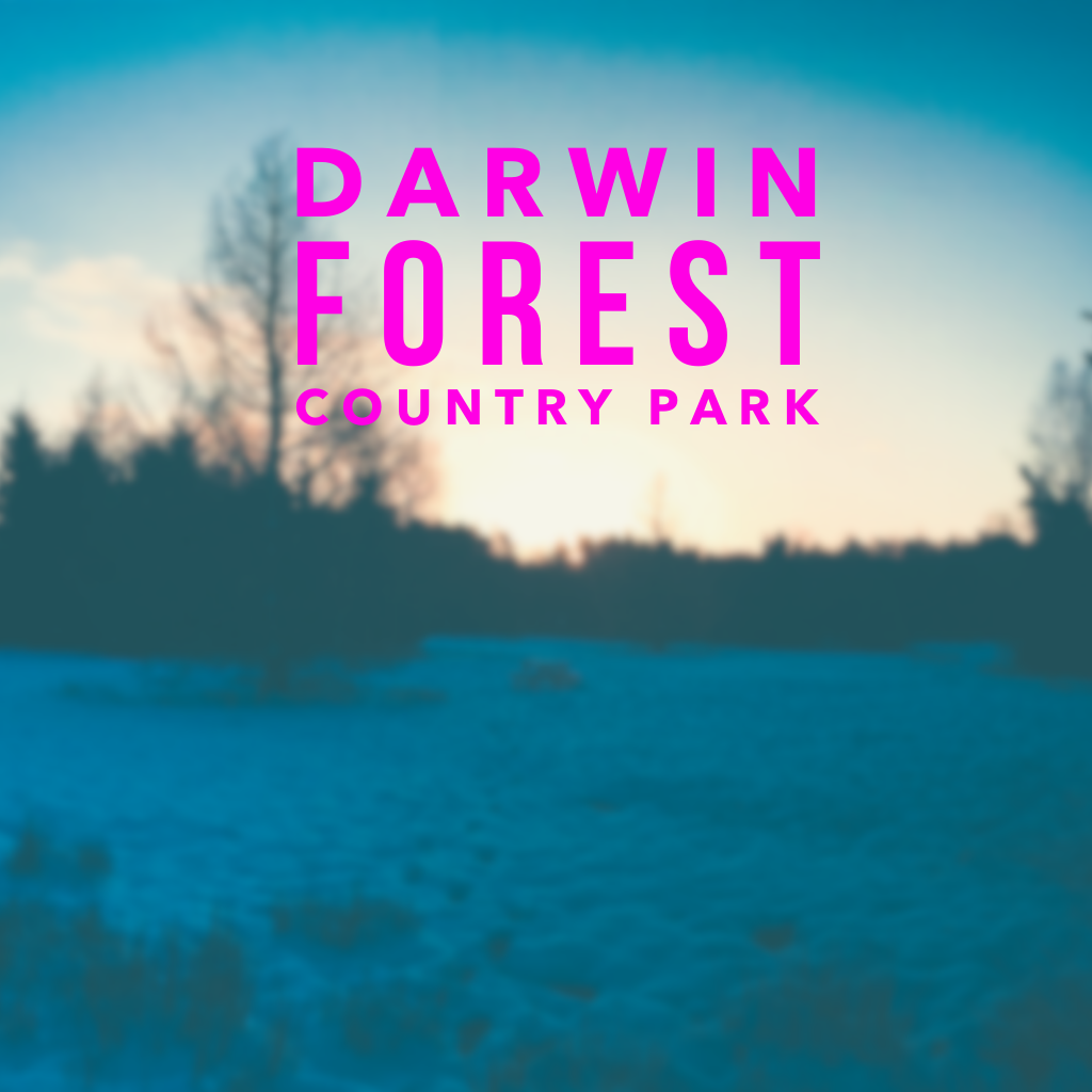 A Lovely Break at Darwin Forest Country Park