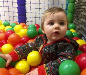 darwin forest country park games room and soft play