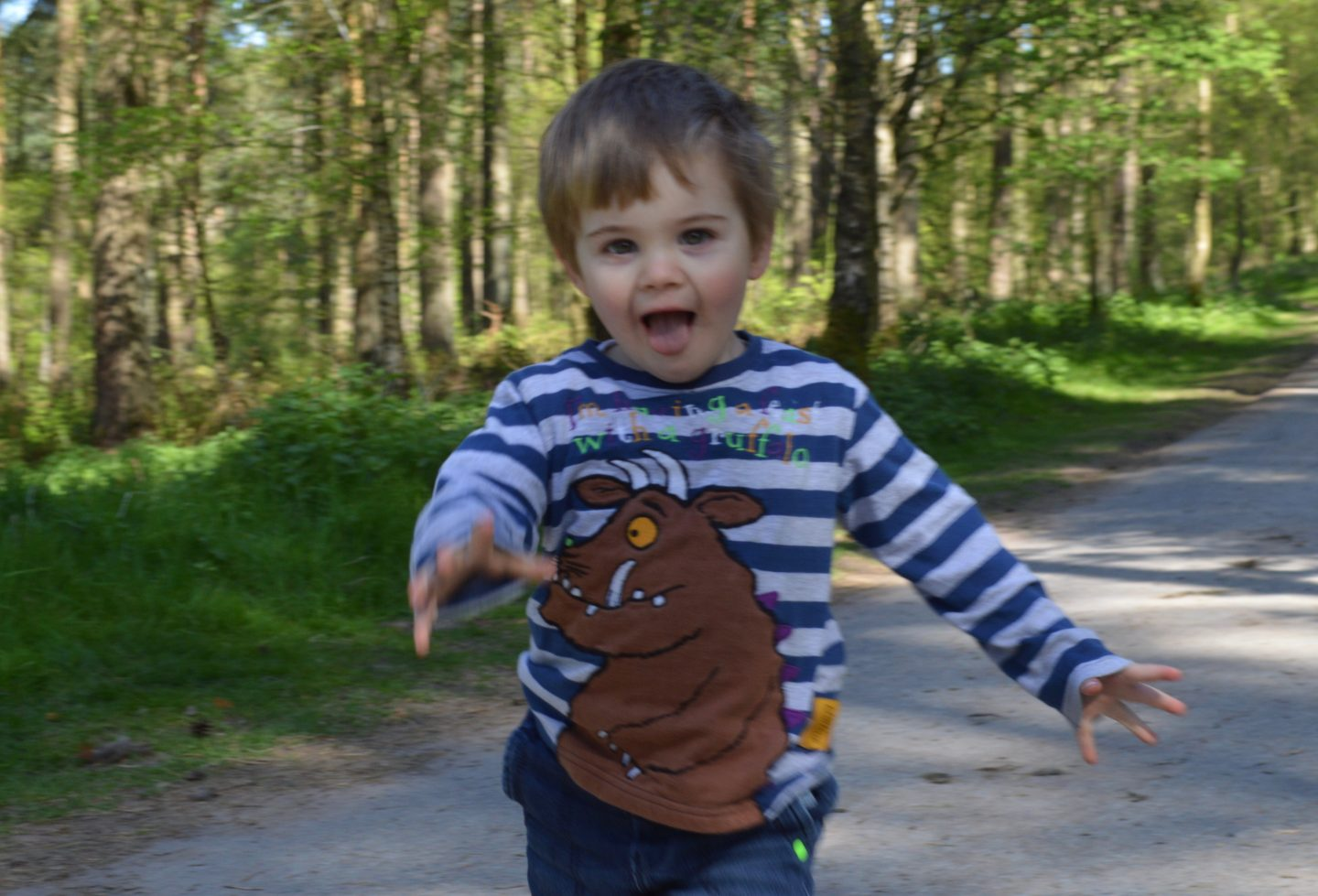 Center Parcs Whinfell Forest with a 2 year old