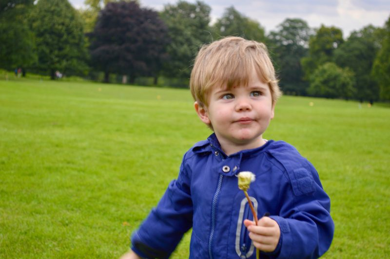 Oliver at Nostell Priory