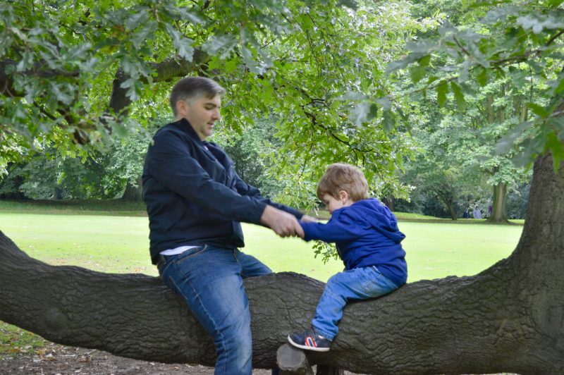Father and son playing in the trees